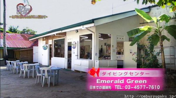 フィリピンセブ島ダイビングならエメラルドグリーン