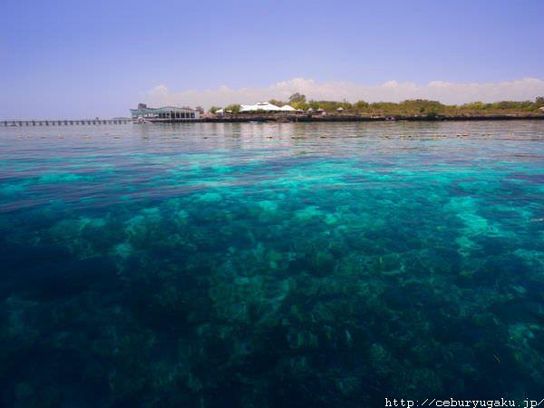 セブの海ってすごいっ!その2|リゾートエリア・セブって?