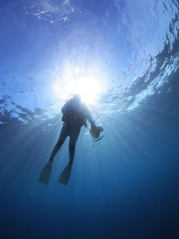 セブの海ってすごいっ! その3 ダイビングの魅力に関して
