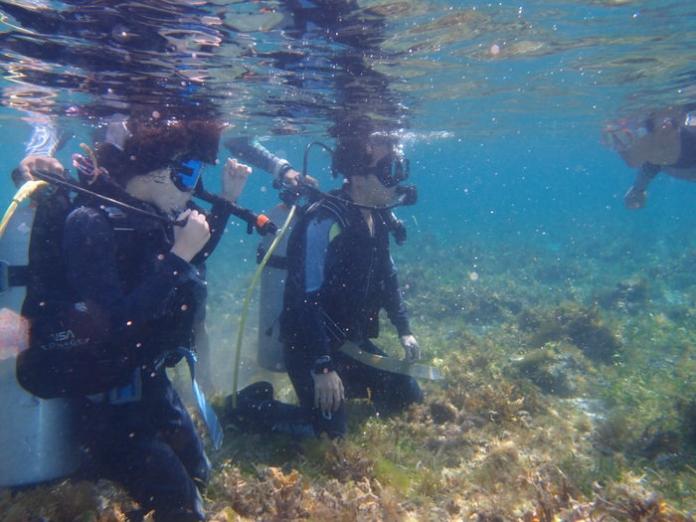 taiken diving10 1