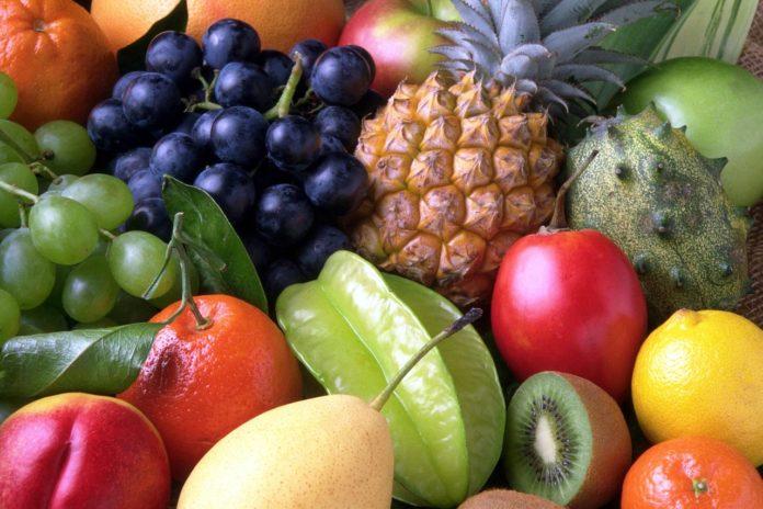 ippan cebu frutu 7 1