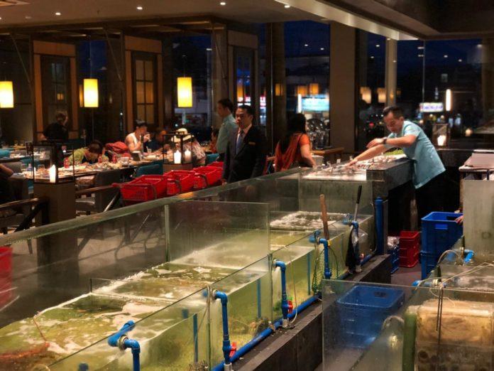 cebu seafoodcity 7 1