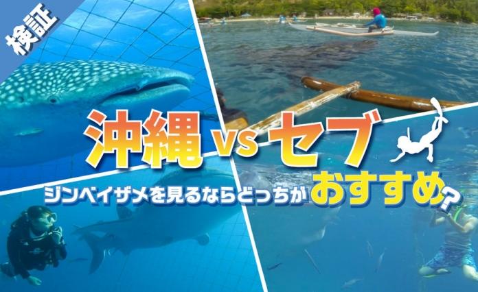 diving jinbei samune